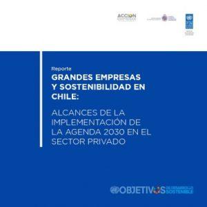 Grandes Empresas y Sostenibilidad en Chile: Alcances de la implementación de la Agenda 2030 en el sector privado