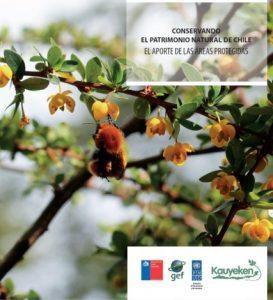 Conservando el patrimonio natural de Chile. El aporte de las áreas protegidas